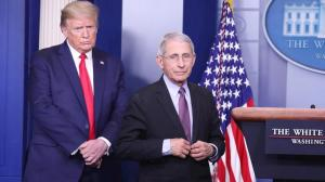 Donald Trump y Anthony Fauci.